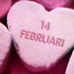 Valentijnsdag organisaties